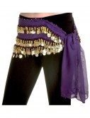 Purple Belly Dance Hip Scarf, halloween costume (Purple Belly Dance Hip Scarf)