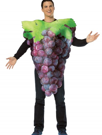 Purple Grapes Adult Costume, halloween costume (Purple Grapes Adult Costume)