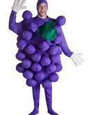 Purple Grapes Costume, halloween costume (Purple Grapes Costume)