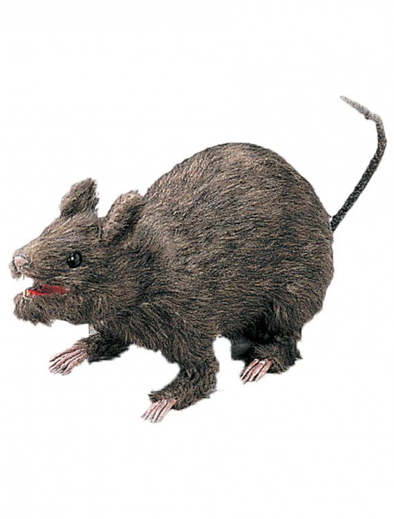 Realistic Large Attacking Rat, halloween costume (Realistic Large Attacking Rat)