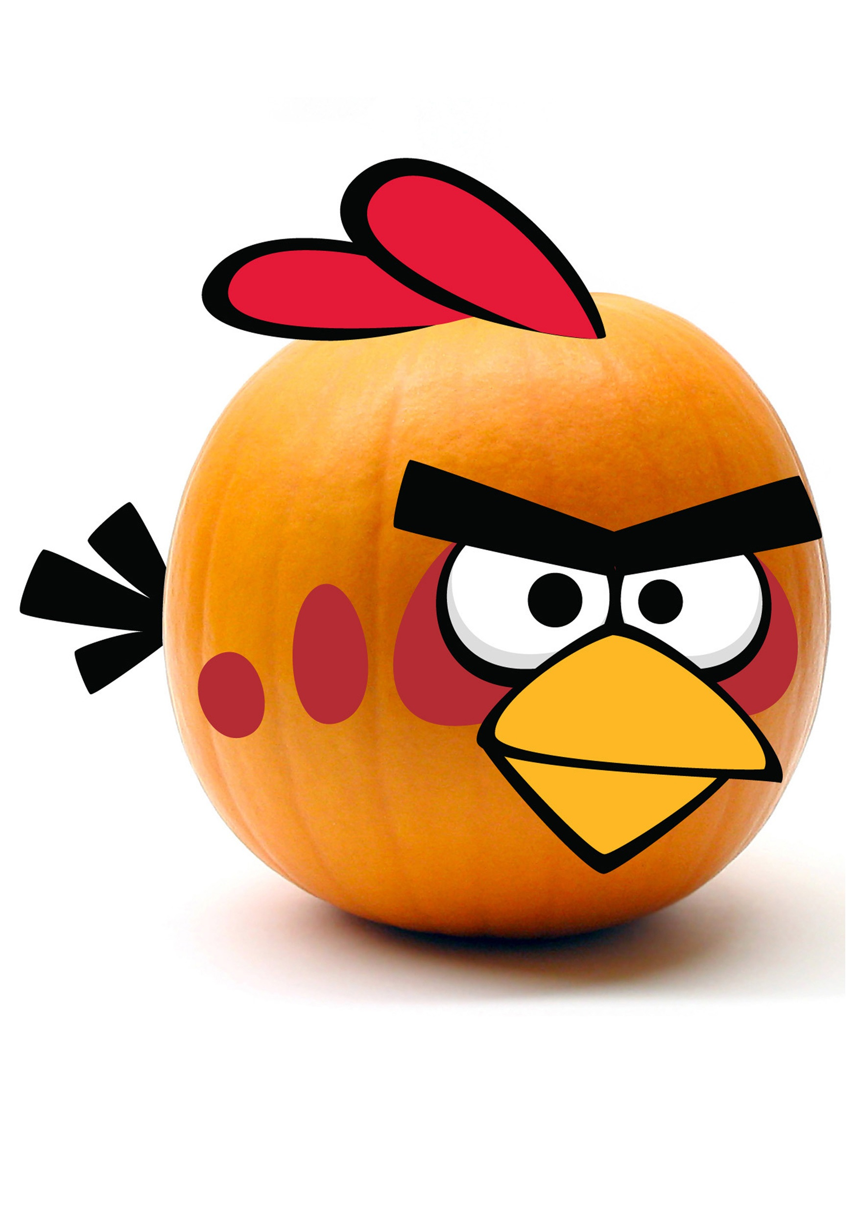 Red Angry Birds Pumpkin Kit - Halloween Costumes