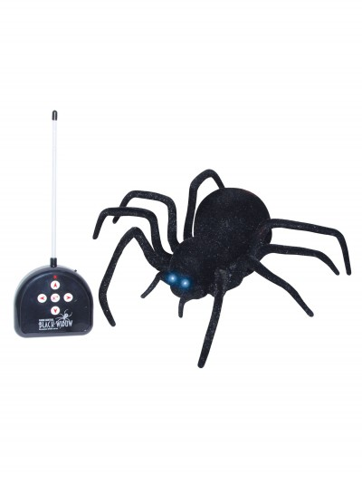Remote Control Spider, halloween costume (Remote Control Spider)