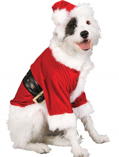Santa Pet Costume, halloween costume (Santa Pet Costume)