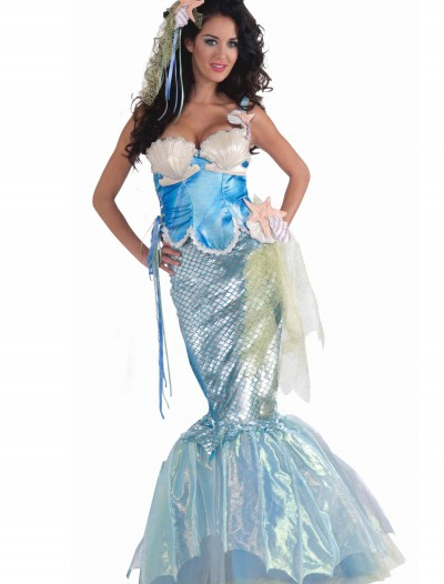 Seashell Mermaid Costume, halloween costume (Seashell Mermaid Costume)