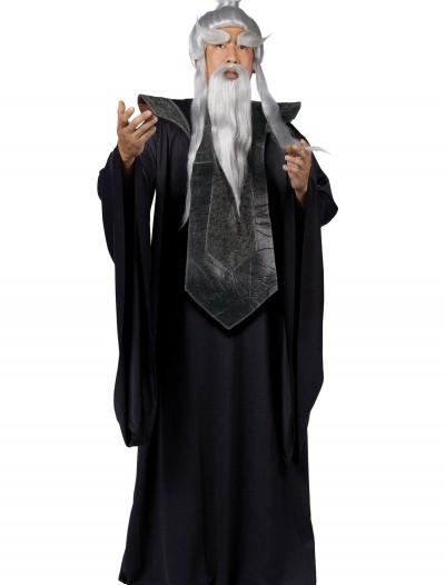 Sensei Master Costume, halloween costume (Sensei Master Costume)