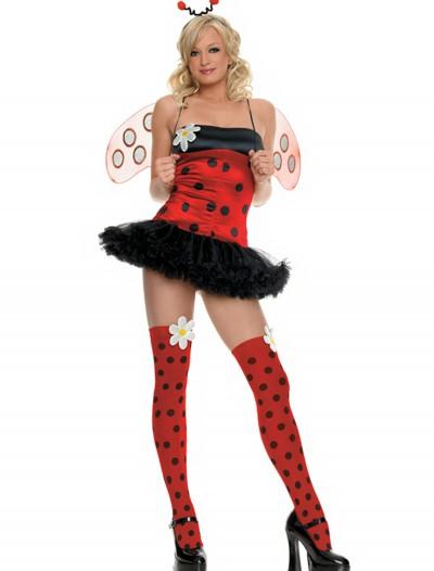 Sexy Ladybug Costume, halloween costume (Sexy Ladybug Costume)