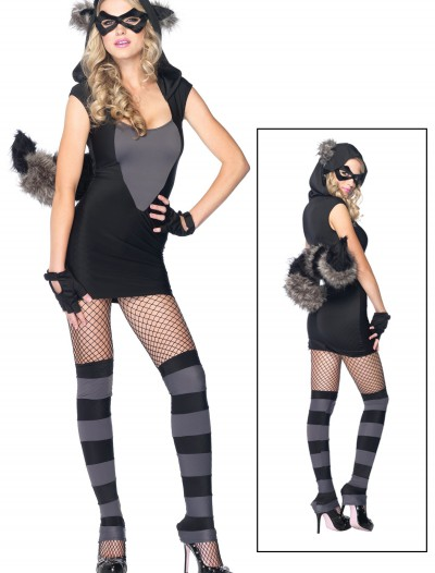 Sexy Raccoon Costume, halloween costume (Sexy Raccoon Costume)