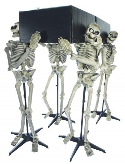Skeleton Pall Bearers, halloween costume (Skeleton Pall Bearers)