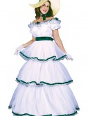 Southern Belle Costume, halloween costume (Southern Belle Costume)