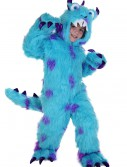 Sullivan the Monster Costume, halloween costume (Sullivan the Monster Costume)