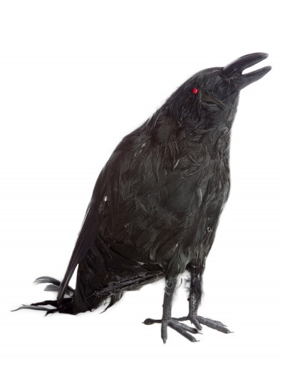 Talking Raven Prop, halloween costume (Talking Raven Prop)