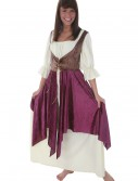 Tavern Lady Renaissance Costume, halloween costume (Tavern Lady Renaissance Costume)
