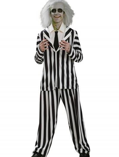 Teen Beetlejuice Costume, halloween costume (Teen Beetlejuice Costume)