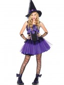 Teen Wicked Witch Costume, halloween costume (Teen Wicked Witch Costume)