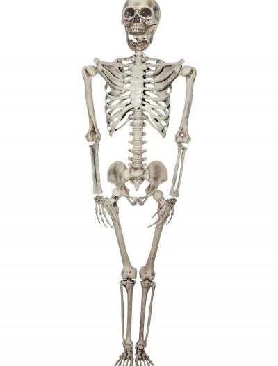 Titan Skeleton, halloween costume (Titan Skeleton)