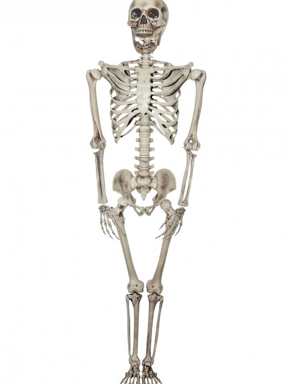 Titan Skeleton, halloween costume (Titan Skeleton)