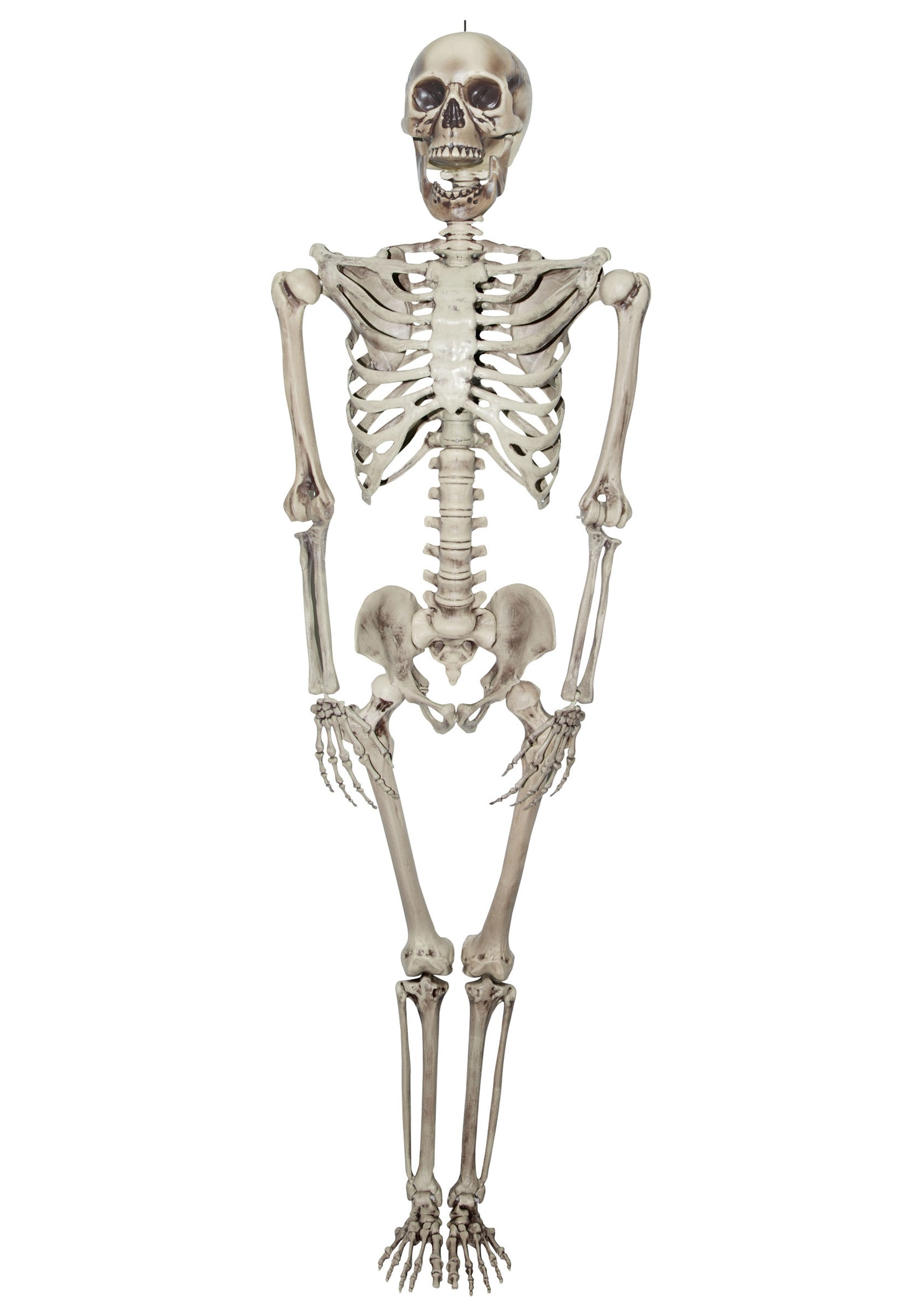 Titan Skeleton - Halloween Costumes