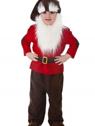 Toddler Dwarf Costume, halloween costume (Toddler Dwarf Costume)