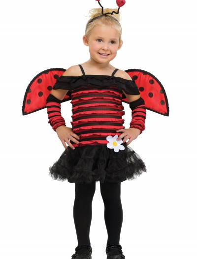 Toddler Little Lady Bug Costume, halloween costume (Toddler Little Lady Bug Costume)