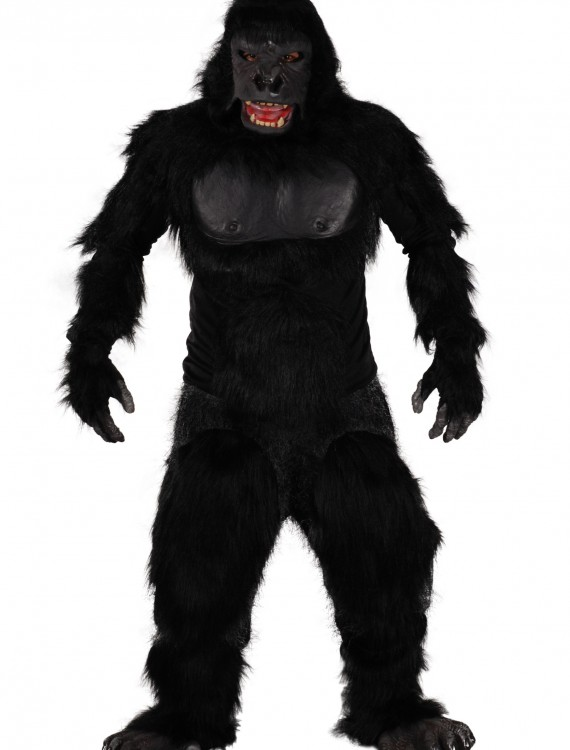 Two Bit Roar Gorilla Costume, halloween costume (Two Bit Roar Gorilla Costume)