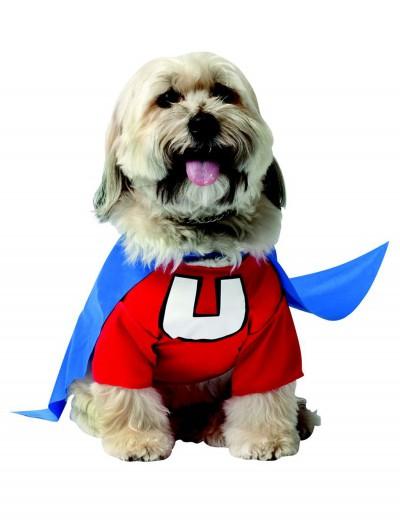 Underdog Dog Costume, halloween costume (Underdog Dog Costume)