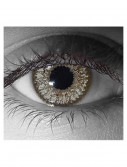 Venus Slate Gray Contact Lenses, halloween costume (Venus Slate Gray Contact Lenses)