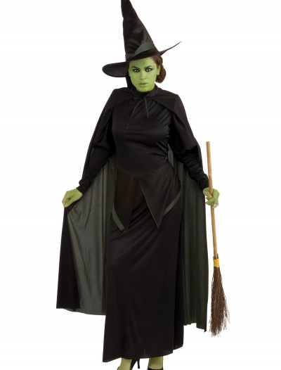 Wicked Witch Adult Costume, halloween costume (Wicked Witch Adult Costume)