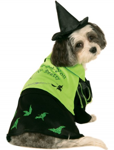 Wicked Witch of the West Pet Costume, halloween costume (Wicked Witch of the West Pet Costume)