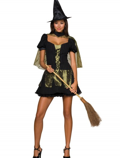 Wicked Witch of the West Sexy Costume, halloween costume (Wicked Witch of the West Sexy Costume)
