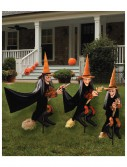 Witchly Group Set of Three, halloween costume (Witchly Group Set of Three)
