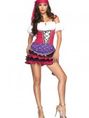 Women's Gypsy Costume, halloween costume (Women's Gypsy Costume)