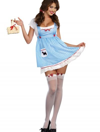 Women's Heel Clickin' Kansas Girl Costume, halloween costume (Women's Heel Clickin' Kansas Girl Costume)