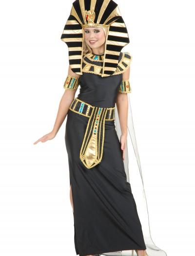 Women's Nefertiti Egyptian Costume, halloween costume (Women's Nefertiti Egyptian Costume)
