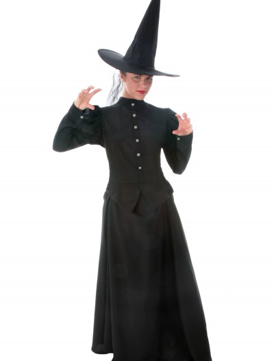 Womens Plus Size Witch Costume, halloween costume (Womens Plus Size Witch Costume)