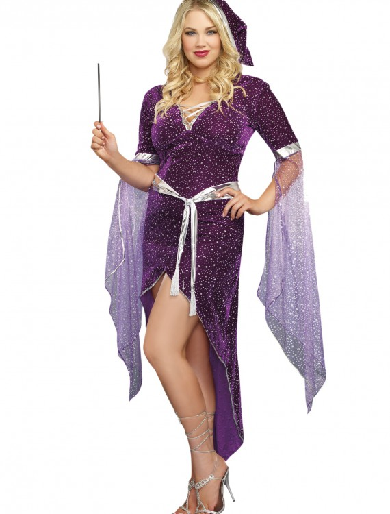 Women's Plus Size Sorcery & Seduction Costume, halloween costume (Women's Plus Size Sorcery & Seduction Costume)