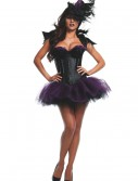 Womens Ravishing Raven Costume, halloween costume (Womens Ravishing Raven Costume)