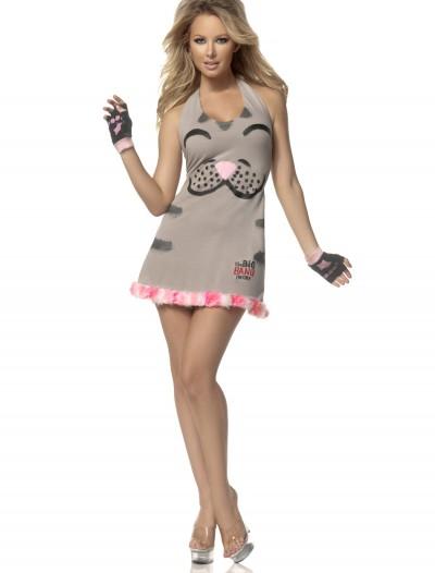 Women's Soft Kitty Costume, halloween costume (Women's Soft Kitty Costume)