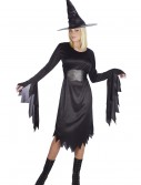 Women's Tattered Witch Costume, halloween costume (Women's Tattered Witch Costume)