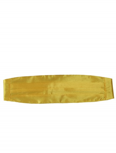 Yellow Cummerbund, halloween costume (Yellow Cummerbund)