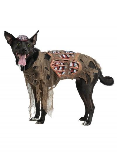 Zombie Dog Costume, halloween costume (Zombie Dog Costume)