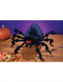 Animated Jumping Spider, halloween costume (Animated Jumping Spider)