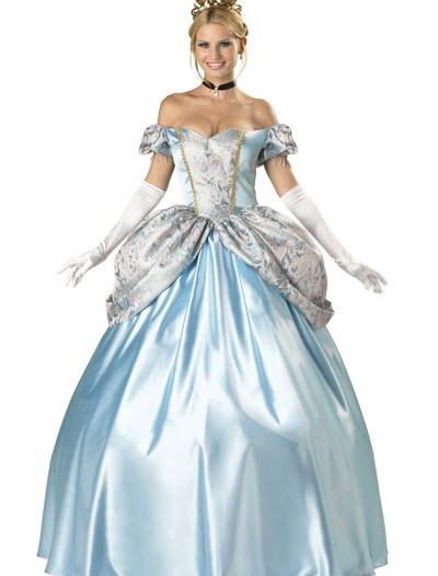 Elite Enchanting Princess Costume, halloween costume (Elite Enchanting Princess Costume)