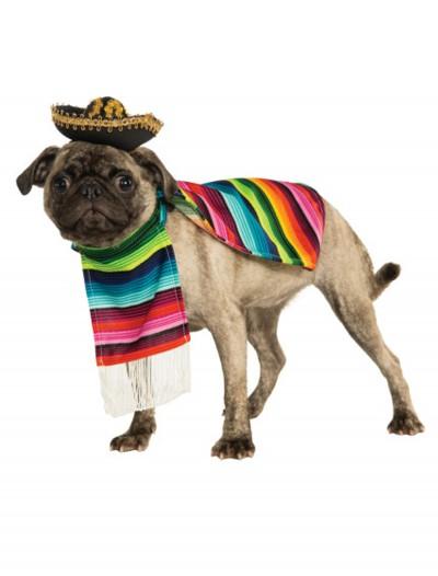 Mexican Serape Pet Costume, halloween costume (Mexican Serape Pet Costume)